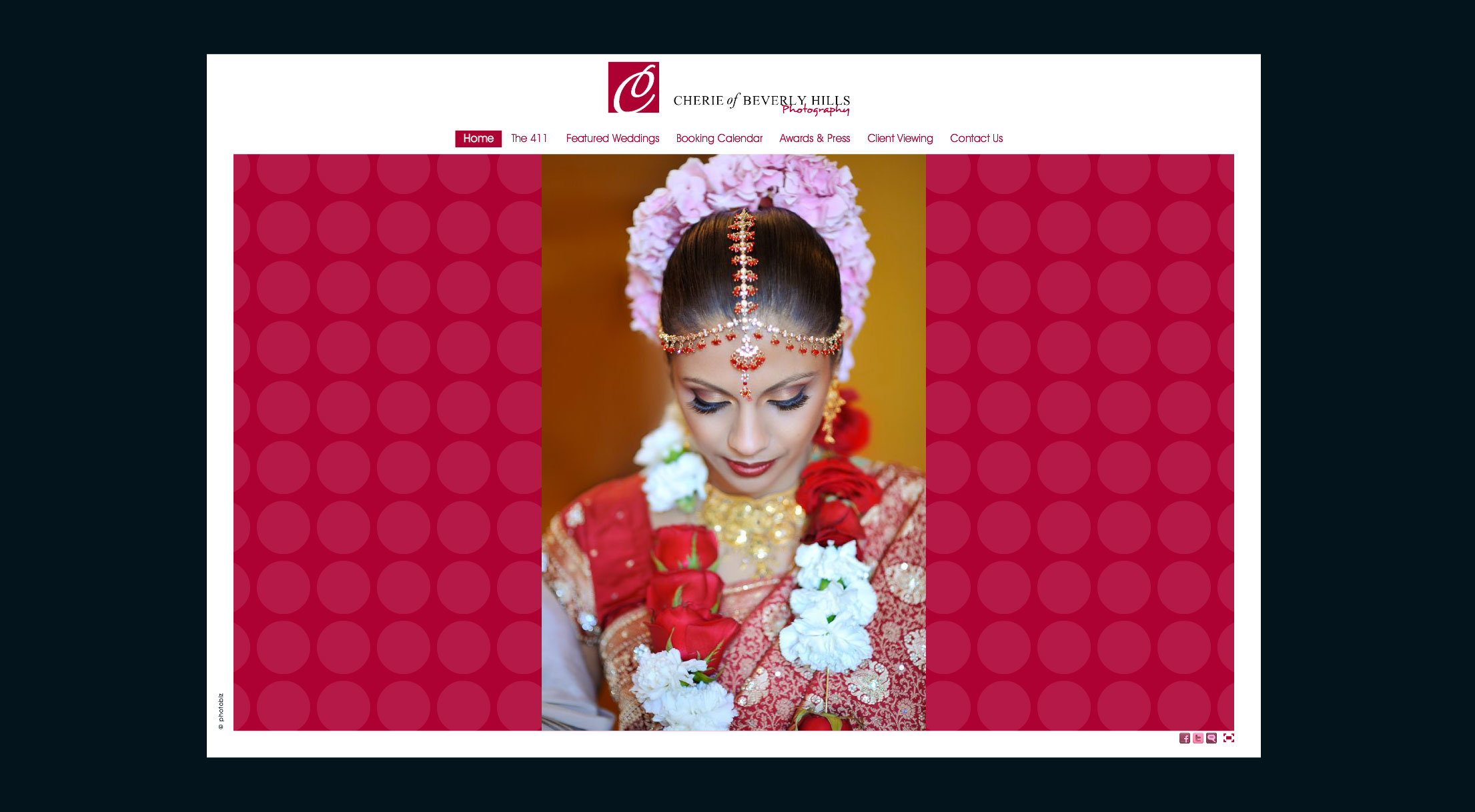 Delhi Flash Portfolio Design